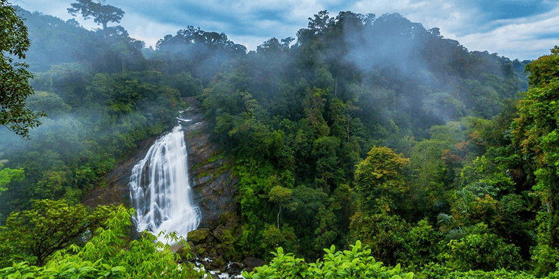 Attukal Waterfalls picture
