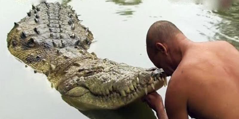 Crocodile Temple Anatpur