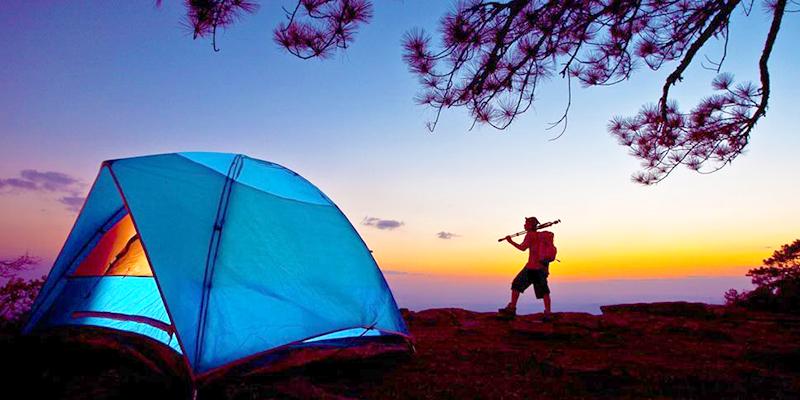 Ziro Valley Camping