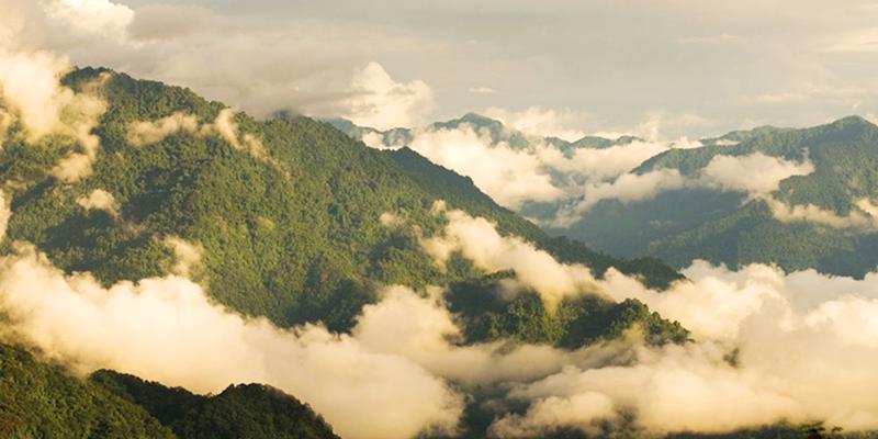 Tezu tourism
