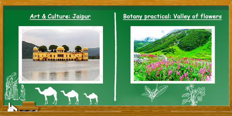 Art and culture in Jaipur Botany practical in Valley of flowers