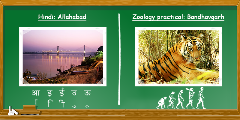 Hindi in Allahabad, Zoology in Bhandhavgarh