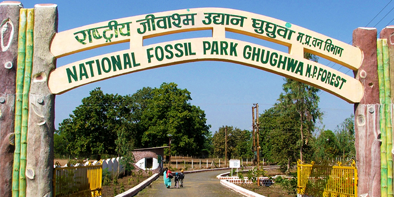 National Fossil Park