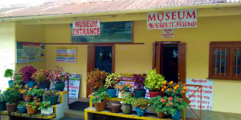 Shembaganur Museum of Natural History