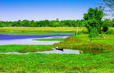 The disappearing world of Majuli