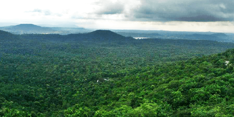 Janapav Kuti