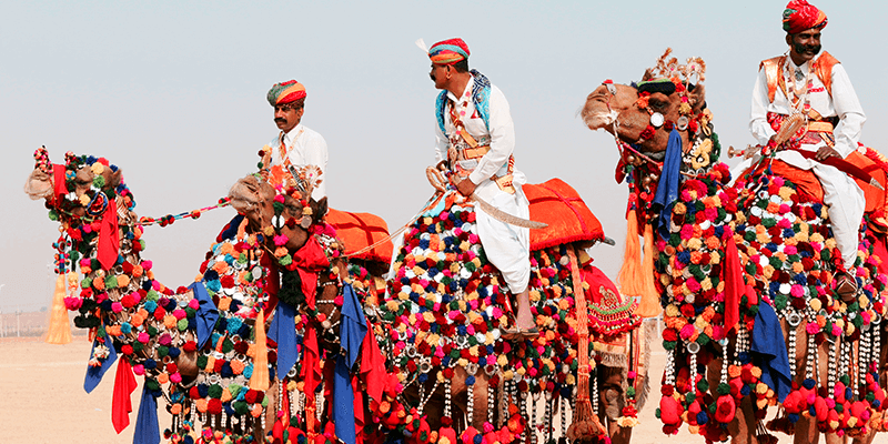 Pushkar Camel trade
