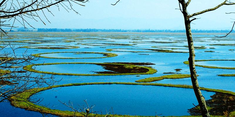 Lokatak Lake Maipur