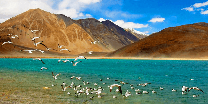 activities in Leh Ladakh