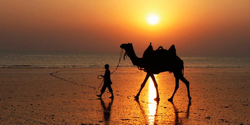 Mandvi Beach images