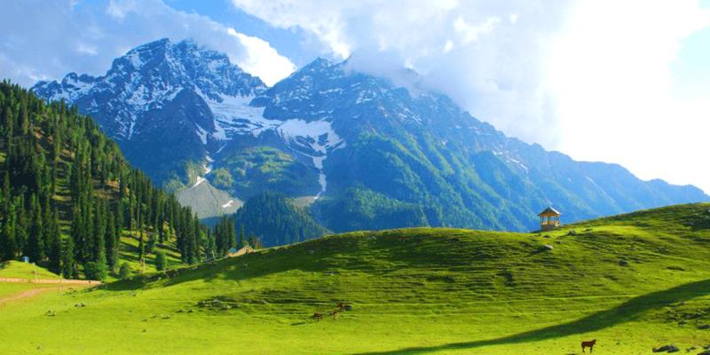 Thajiwas glacier images