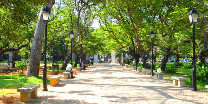Bharathi Park images