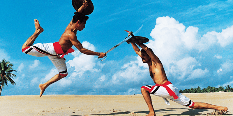 Sothh indian style of martial art