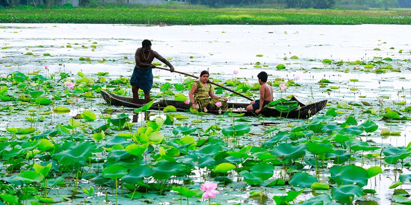 Vellayani Kayal images