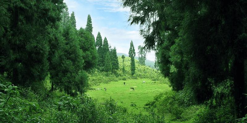 Silence Valley