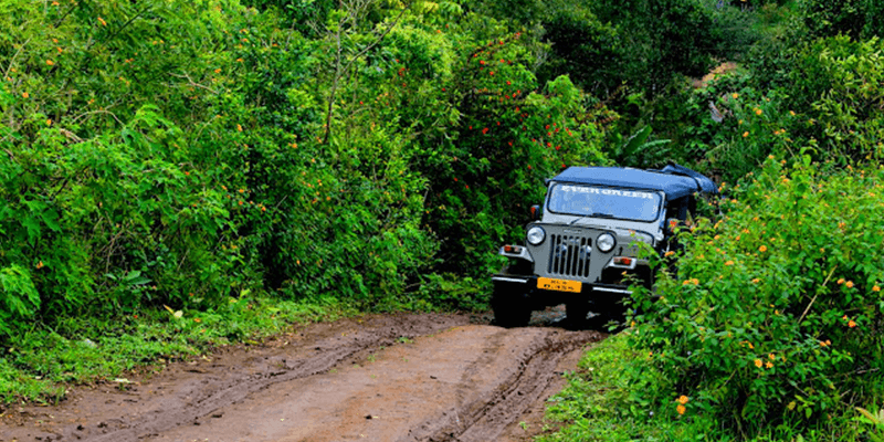 Gavi forests safari