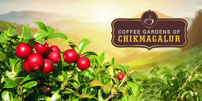 Chikmagalur sightseeing