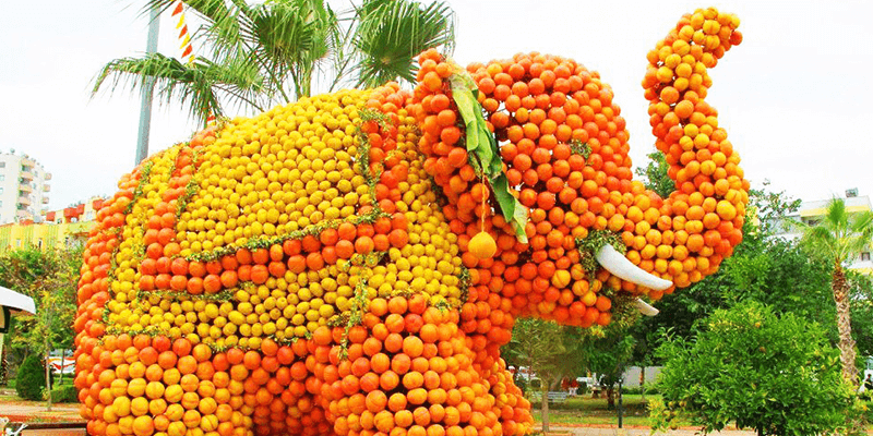 Jampui Orange Festival