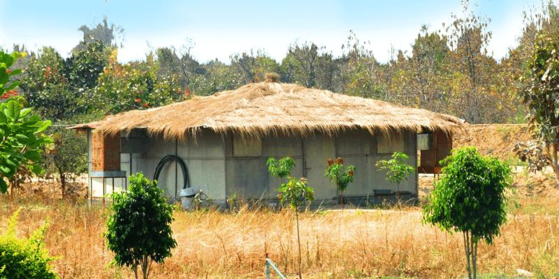 Moharli Village