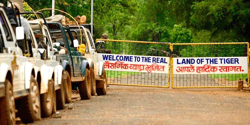 Tadoba gates