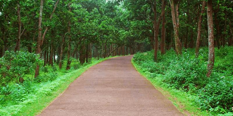 Palamu road